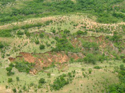 Conversão de Multas Ambientais