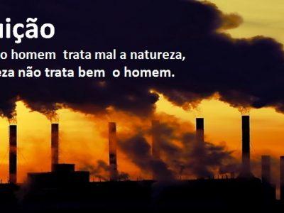 Poluição. Revista Síntese – Direito Ambiental, v. 13, p. 118-134, 2013.