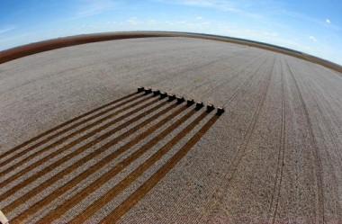 Programa Nacional de Zoneamento Agrícola de Risco Climático – ZARC