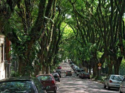 Lei 13.731/2018 prevê mecanismos de financiamento para a arborização urbana e a recuperação de áreas degradadas