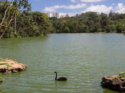 SP tem quatro novas Reservas Particulares de Patrimônio Natural  Unidades de conservação estão localizadas nos municípios de Pindamonhangaba, Socorro, Indaiatuba e São José do Barreiro.