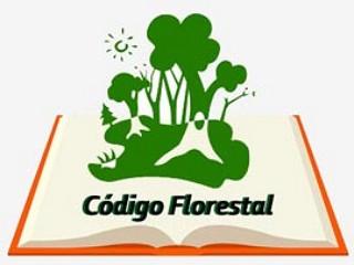 Regulamentado o Novo Código Florestal