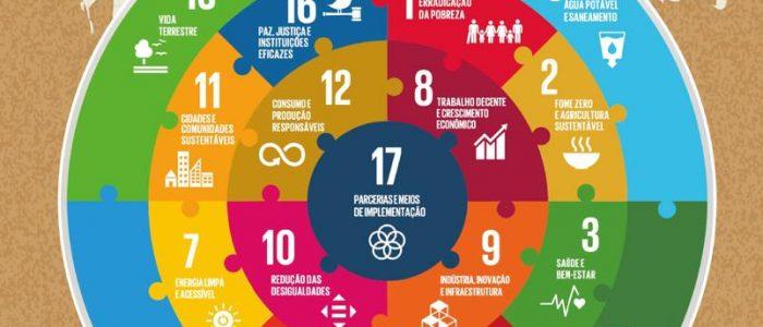 Curso: Os Objetivos de Desenvolvimento Sustentável e o Terceiro Setor