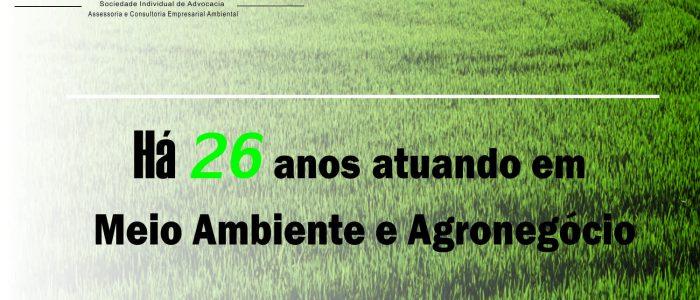A verdade sobre os agrotóxicos e o desmatamento no Brasil.