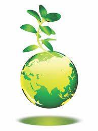 Semana do Meio Ambiente