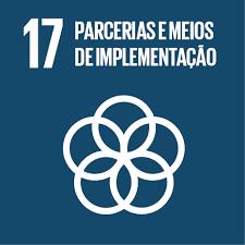 ODS 17: Parcerias e meios de Implementação
