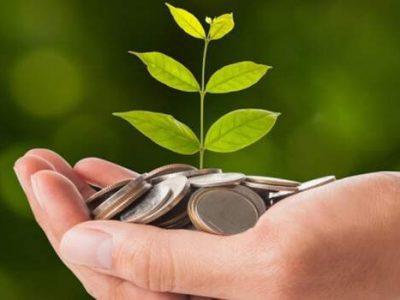 Lei que cria política de pagamento por serviços ambientais é publicada