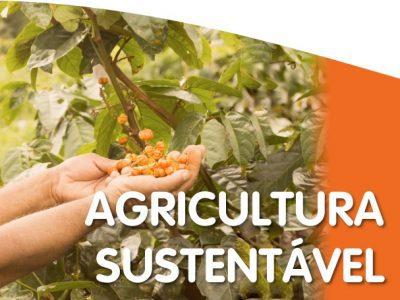 Perspectivas de Melhorias na Política Agropecuária