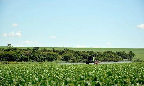 Agrotóxico, defensivo, afinal o que se joga nas plantações?