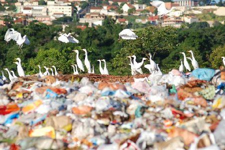 Ana publica primeira Resolução sobre Serviços Públicos de Manejo de Resíduos Sólidos.