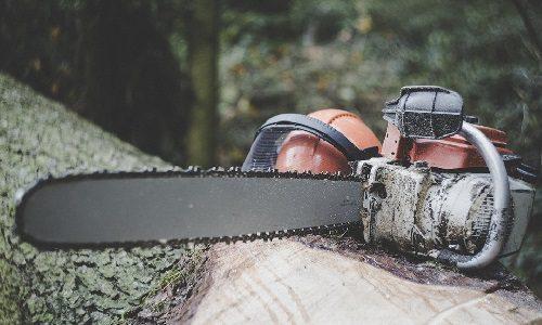 STJ – Segunda Turma confirma multa de valor fixo por hectare desmatado em área de preservação ambiental